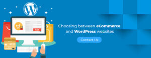 eCommerce and WorPress websites